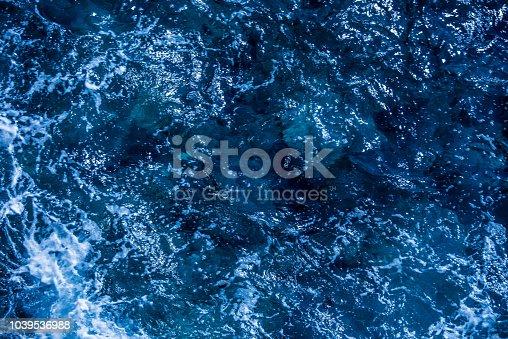 istock Blue deep sea foaming water background 1039536988