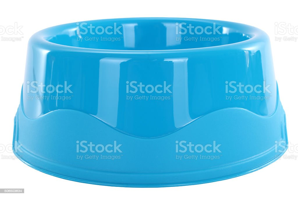 Blue dog bowl for pets stock photo