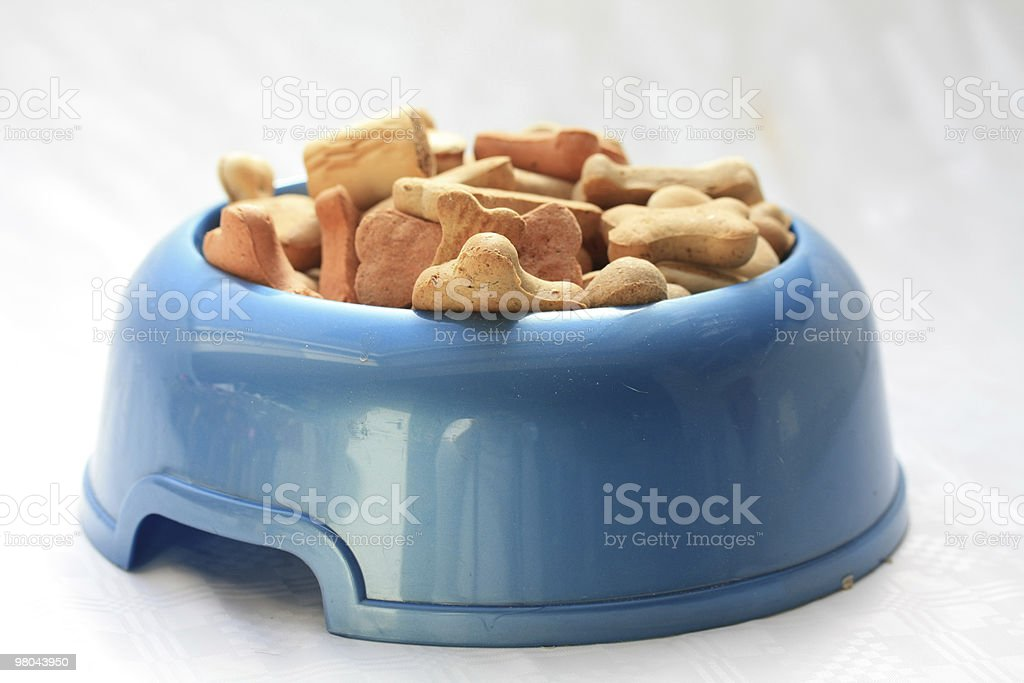 blue dog bowl royalty-free stock photo