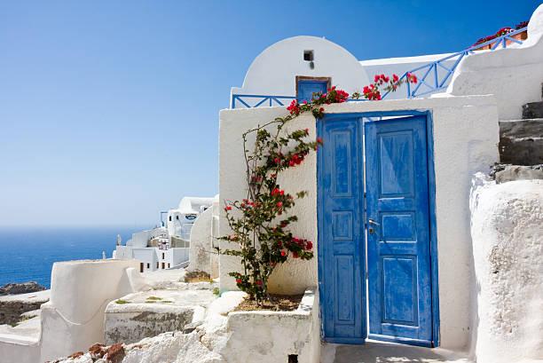 blue door und bougainvillea – Foto