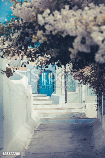 traditional white houses covered with bougainvillea flowers in santorini, greece.