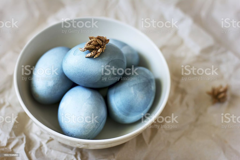 Blue easter eggs in a plate royalty-free stock photo