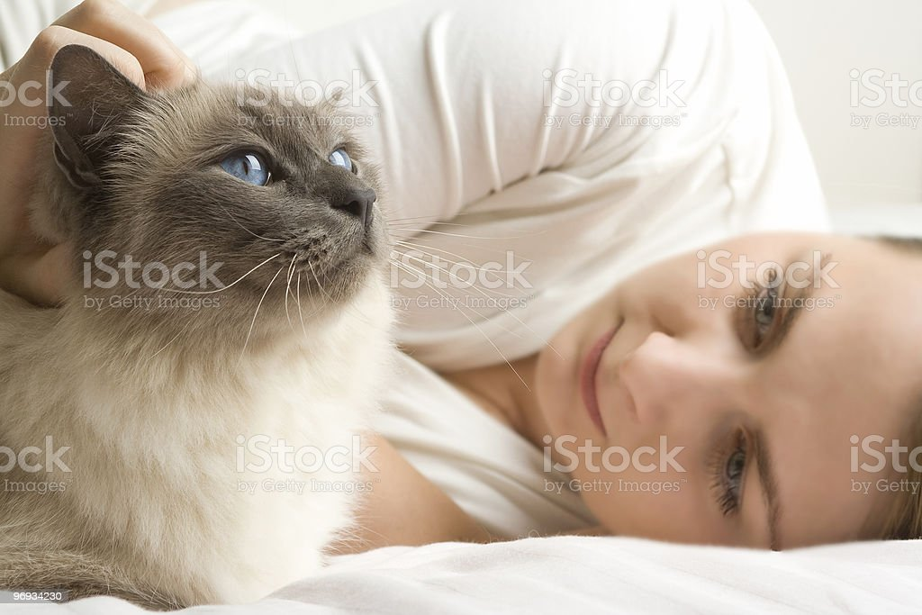 Blue eye cat with woman royalty-free stock photo
