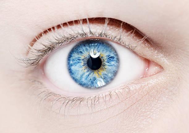 blue eye macro stock photo