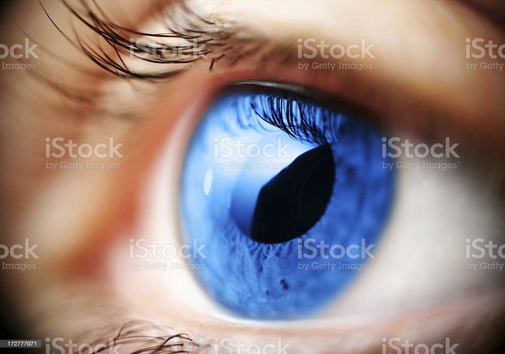 blue eye macro royalty-free stock photo