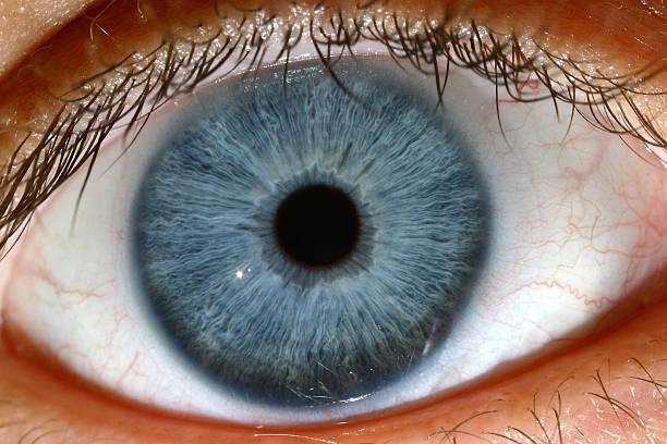 Blue Eye Macro shot of blue eye iris eye stock pictures, royalty-free photos & images