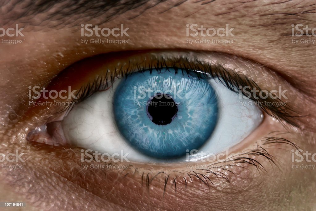 Blue Eye Stock Photo Download Image Now Istock