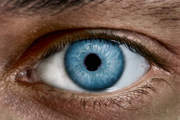 occhio blu - near foto e immagini stock