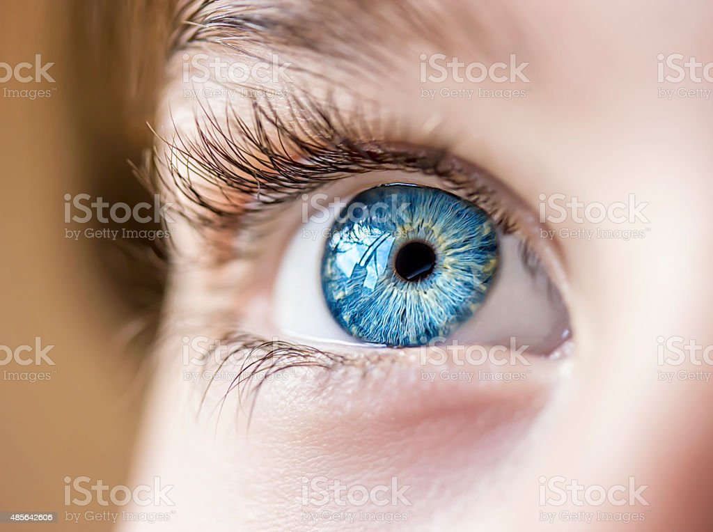 blue eye insightful look blue eye boy 2015 Stock Photo
