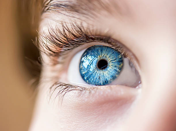 blue eye - 特寫 個照片及圖片檔