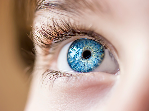 Blue Eye Stock Photo - Download Image Now