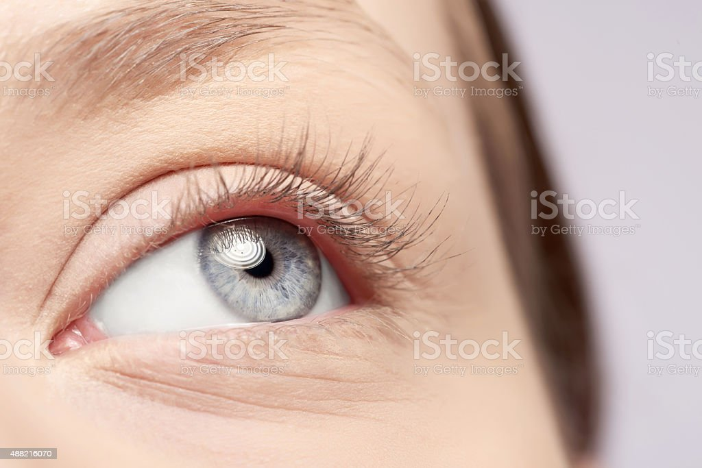 Royalty Free Gray Eyes Pictures Images And Stock Photos Istock