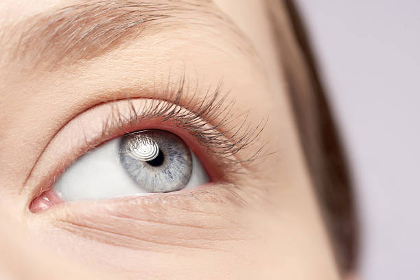 Best Hair Color For Blue Gray Eyes