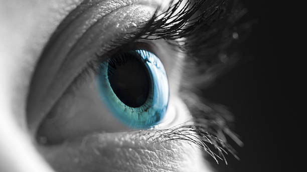 blue eye - eye stock photos and pictures