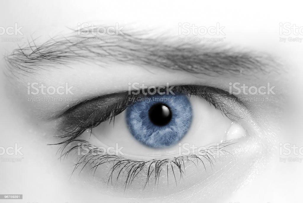 Blue eye royalty-free stock photo