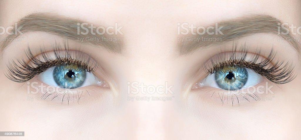 blue eyes looking at camera stock photo