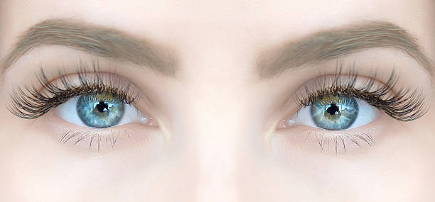 blue eyes looking at camera woman blue eyes looking at camera with lonf eyelashes, reflection in it.horizontal shot. false eyelash stock pictures, royalty-free photos & images