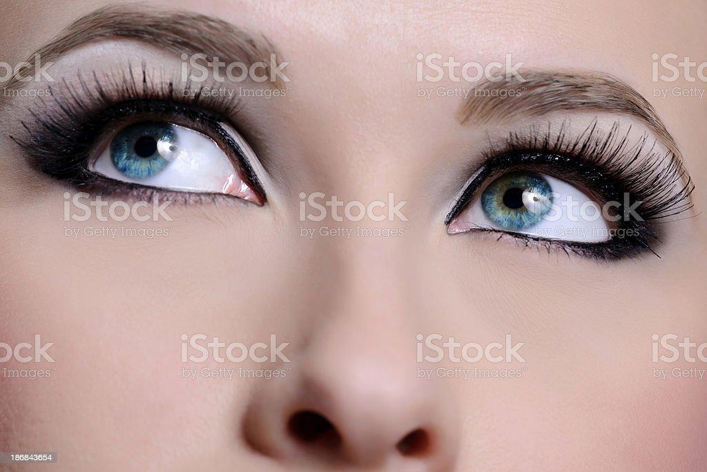 blue eyes macro royalty-free stock photo