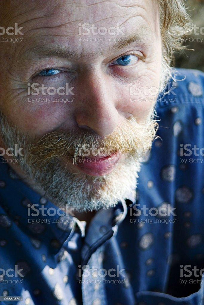 Blue Eyes royalty-free stock photo