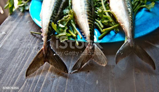 635931692 istock photo blue fish just caught fresh great for a healthy diet 526826354