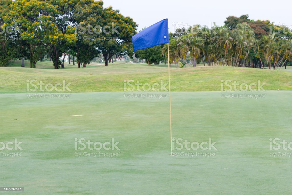 Blue flag at the beautiful golf course stock photo