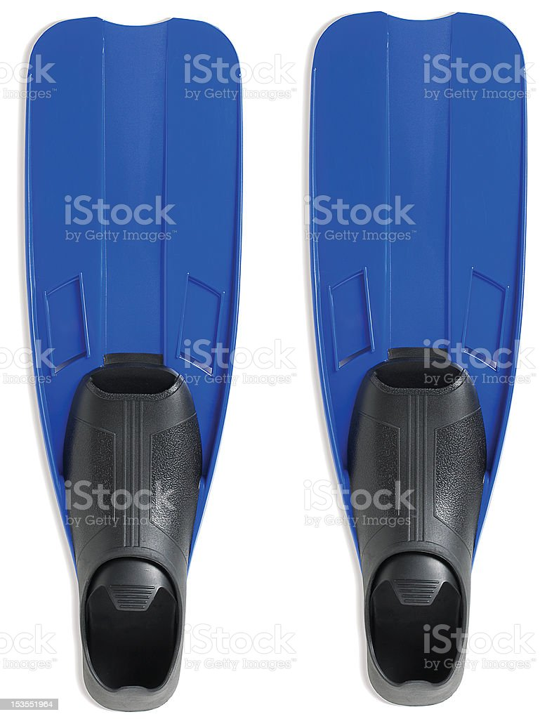 blue flippers isolated on a white background stock photo