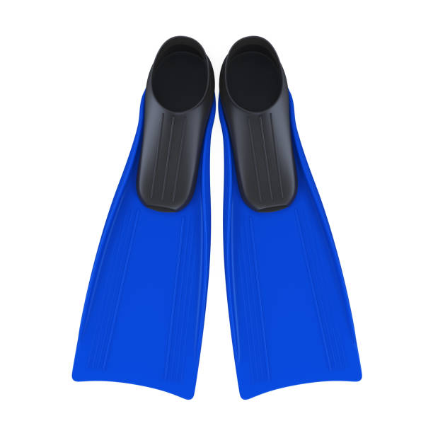 Blue Flippers Isolated Blue Flippers isolated on white background. 3D render diving flipper stock pictures, royalty-free photos & images