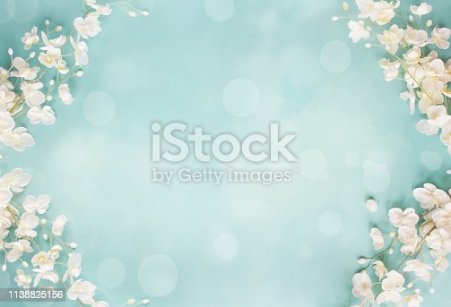 Beautiful and peaceful spring flower blossoms and blurred bokeh against a blue background.Image shot from top view.