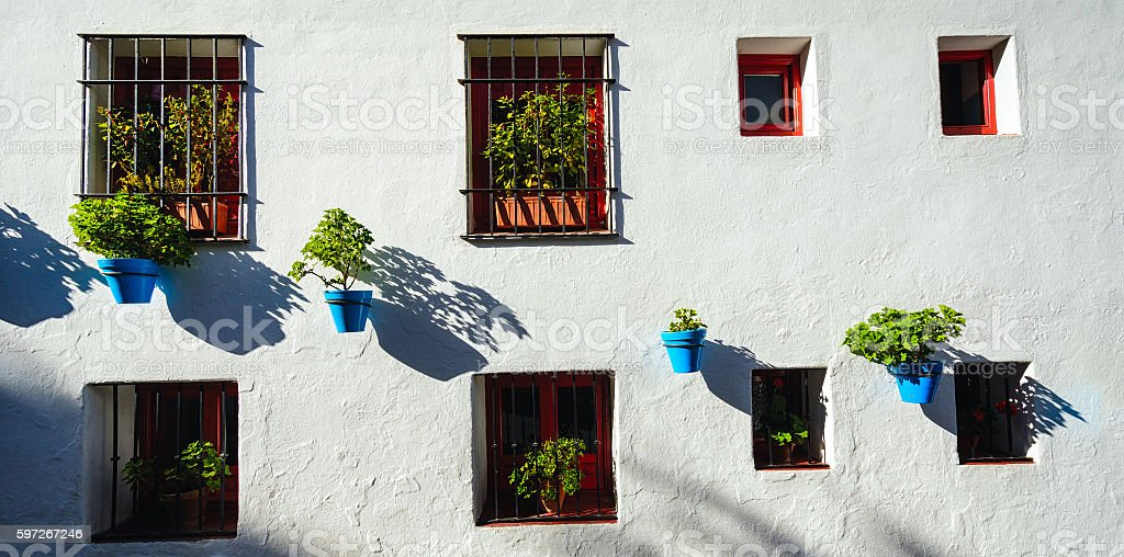Blue flower pots on a whitewashed wall Lizenzfreies stock-foto