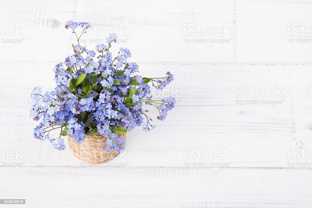 blue flowers bouquet on white wooden background stock photo