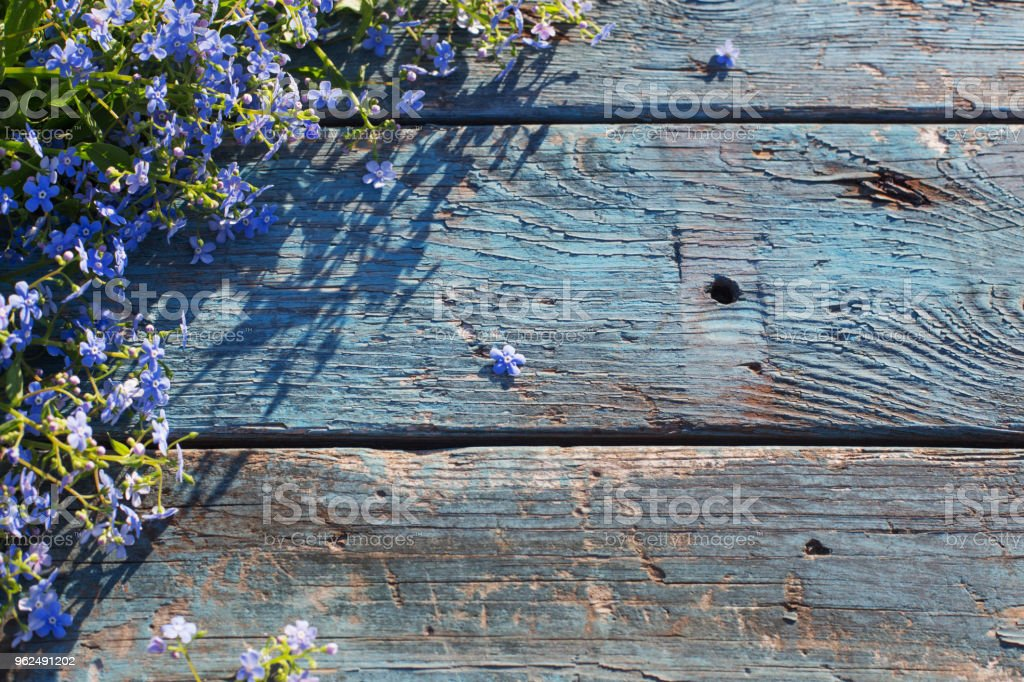 blue flowers on old wooden background - Royalty-free Beauty Stock Photo