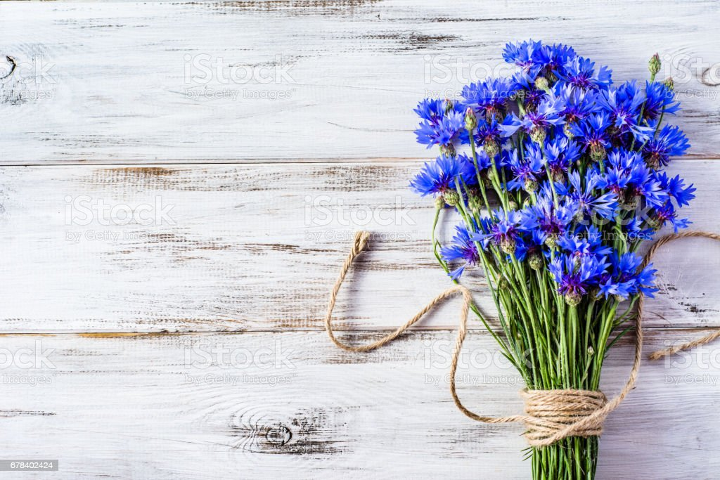 Blue flowers, summer wildflowers bouquet on white wooden background, copy space stock photo