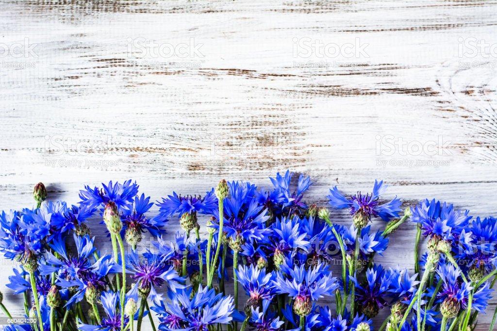 Bleu fleurs, fleurs sauvages d'été sur fond en bois, surcharge - Photo
