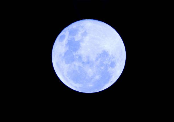 blaue vollmond in der dunklen nacht - englisches vollblut stock-fotos und bilder