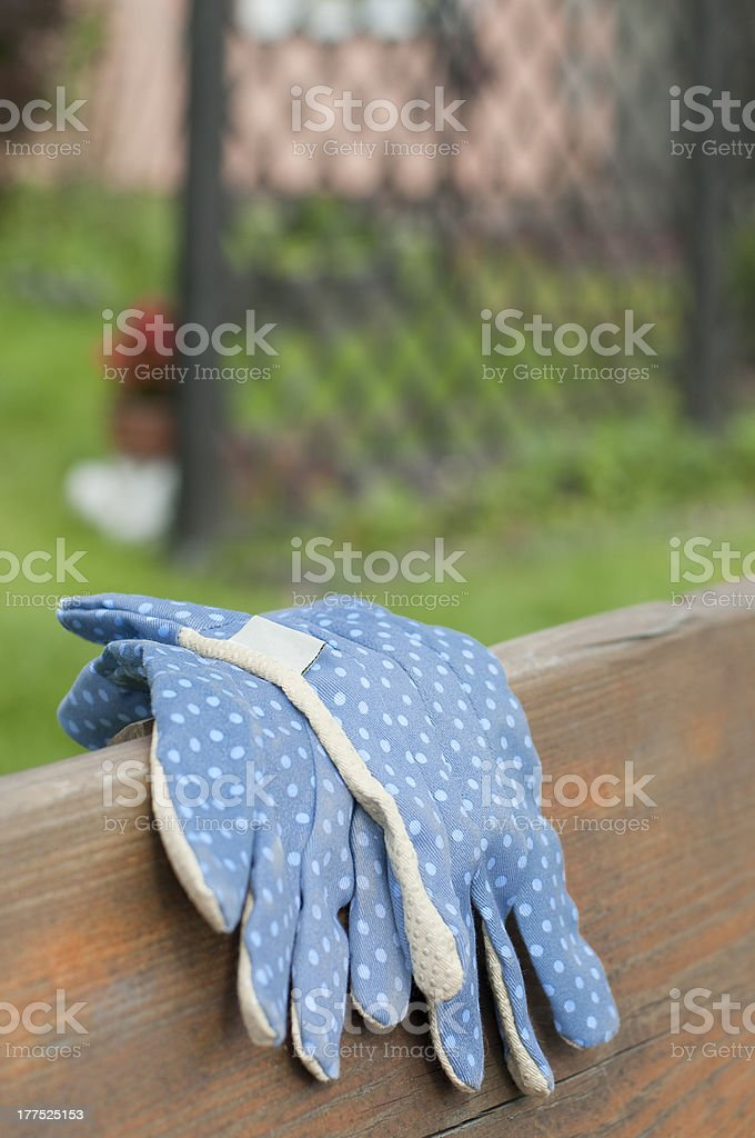 Miraculous Blue Garden Gloves Stock Photo More Pictures Of Bench Istock Pdpeps Interior Chair Design Pdpepsorg