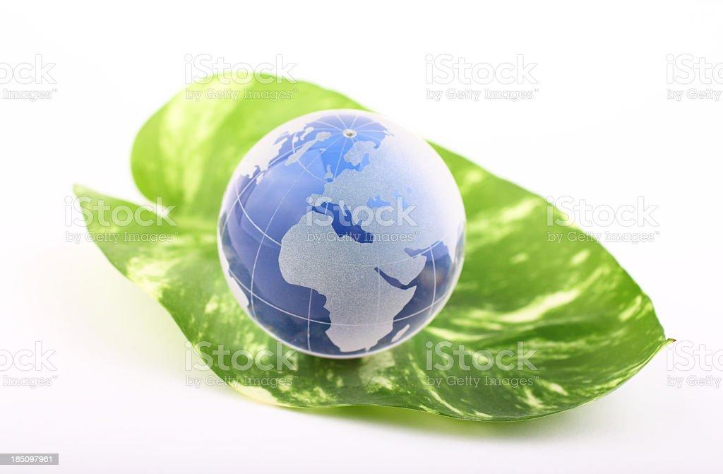 Blue globe on leaf royalty-free stock photo