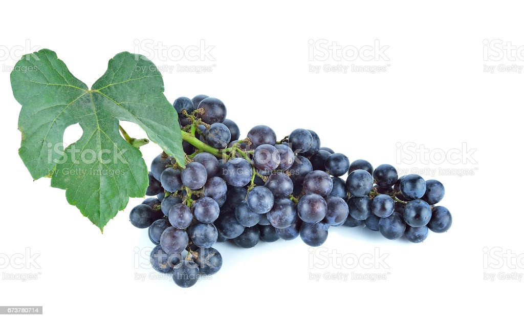 Blue grapes dry bunch isolated on white background photo libre de droits