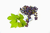 Blue home-grown grapes with leaves in old china bowl on white background.