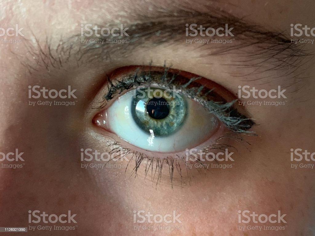 Augen grüne oder blaue Welche Brillenfarbe