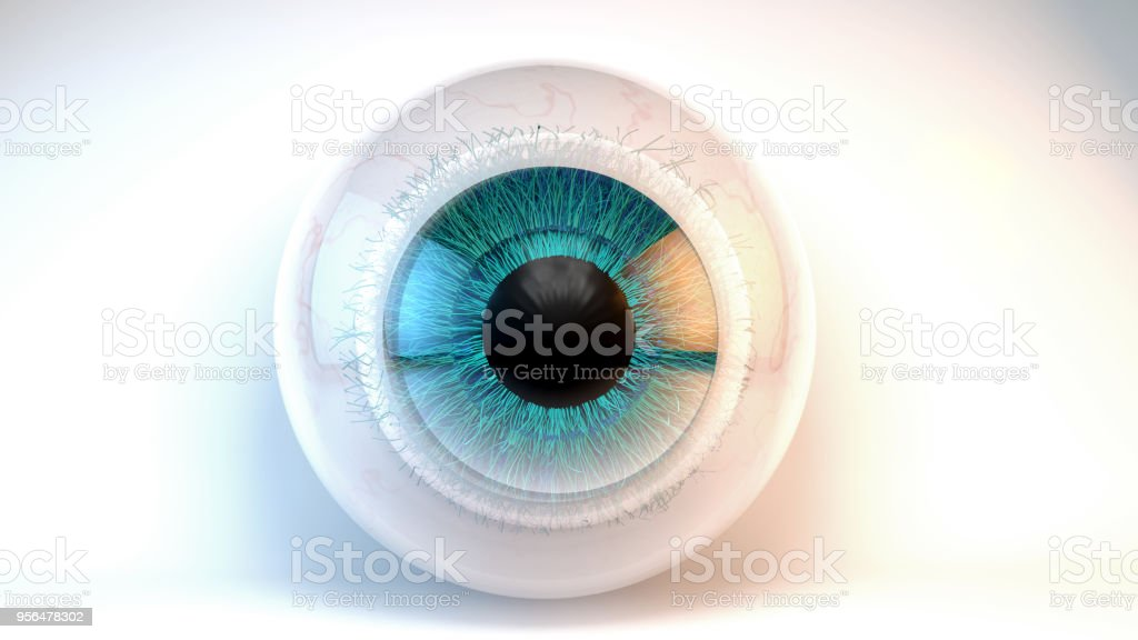 Blue green eye stock photo