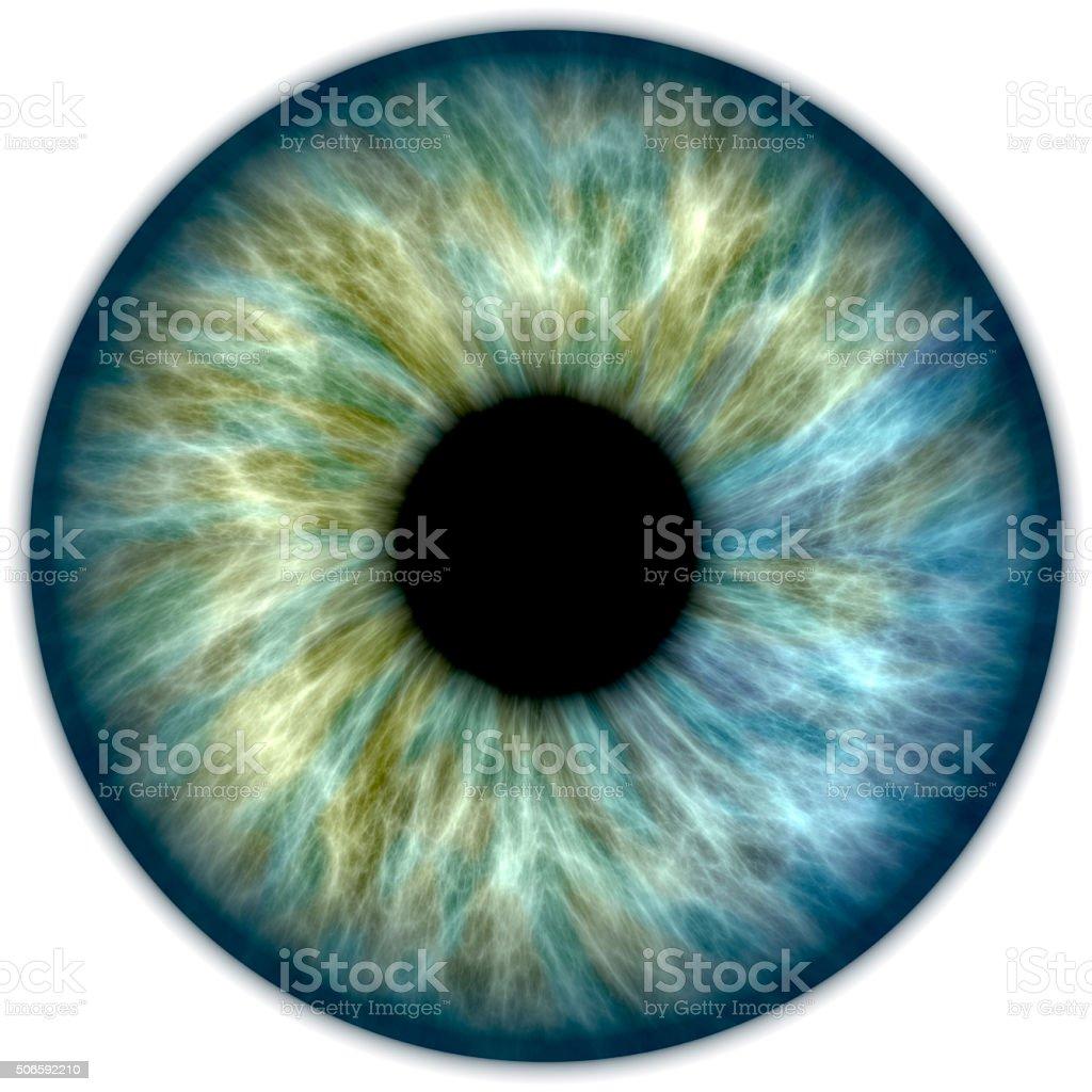 Blaue grüne IRIS – Foto