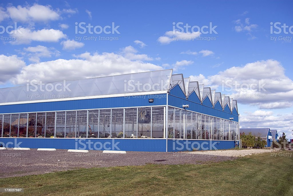 Blue Greenhouses royalty-free stock photo