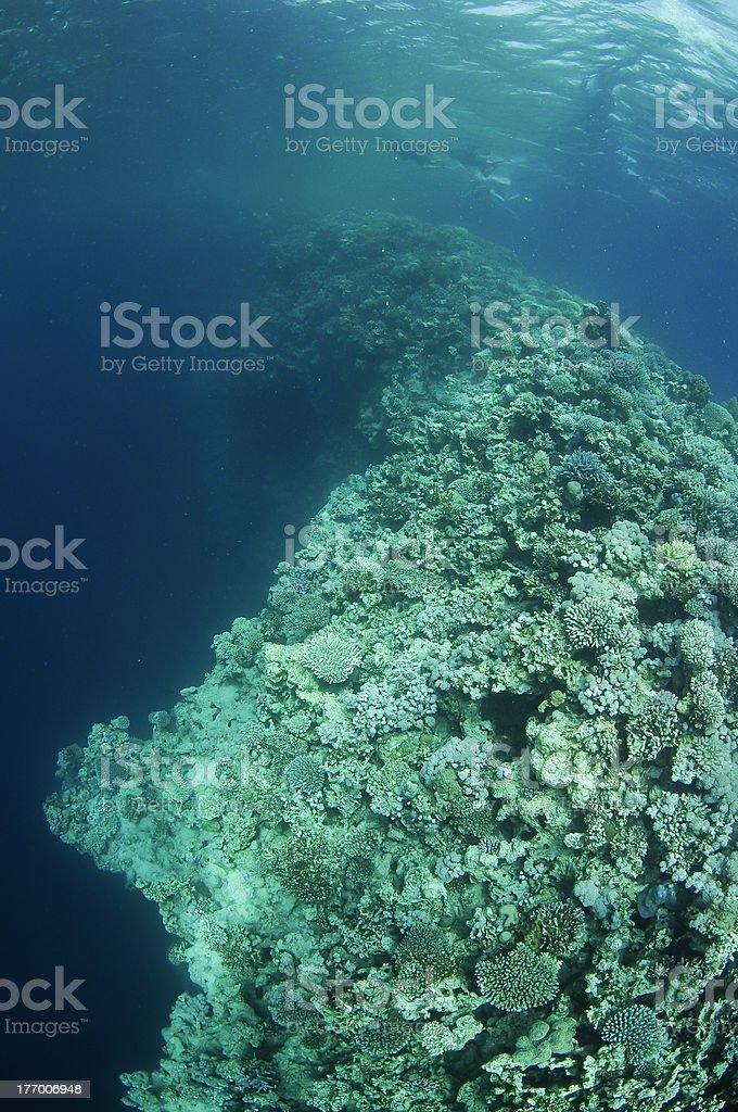 Blue Hole, Dahab,Egypt royalty-free stock photo