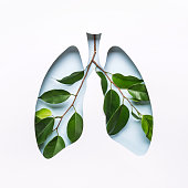 istock Blue Hole Lungs and green twigs as symbol of healthy lungs. World Tuberculosis Day or World Lung Day concept. Minimal Paper Art 1219287676