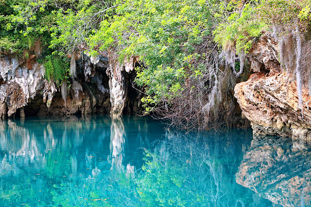 blue hole - nature reserve stock photos and pictures