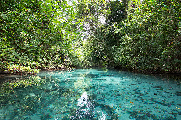 Blue Hole Blue Hole, Vanuatu vanuatu stock pictures, royalty-free photos & images