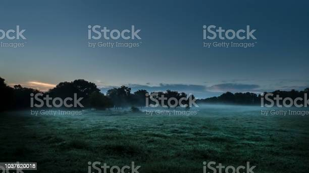 Photo of Blue hour in the country