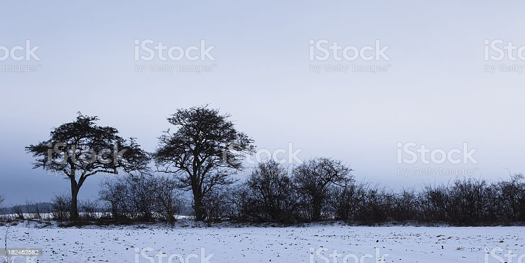 Blue Hour in the Countryside royalty-free stock photo