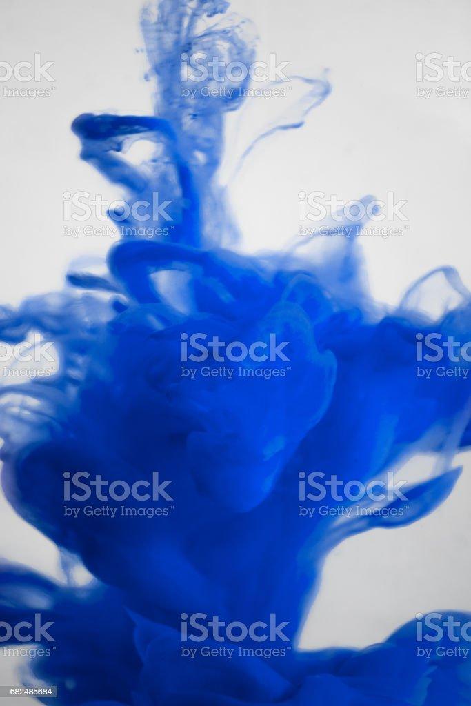 blue ink in water isolated on white background foto de stock libre de derechos