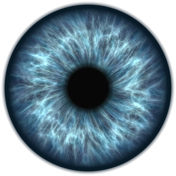 blue iris - blaue kontaktlinsen stock-fotos und bilder